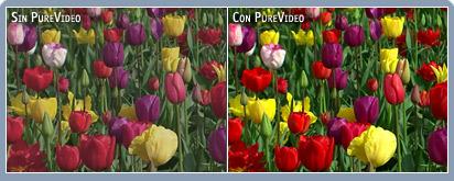 Colores vivos e intensos en cualquier pantalla